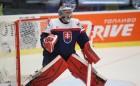 slovensko ms v hokeji 2015