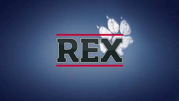 komisar-rex